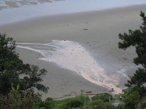 Photograph of sediment.